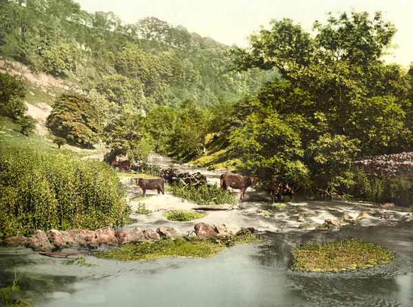 Peak District Millers Dale 29 - Old Photos of Peak District