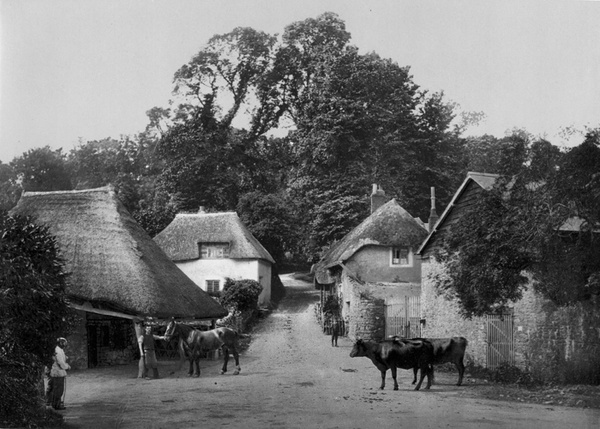 Torquay Cockington Forge 20 - Old Photos of Torquay