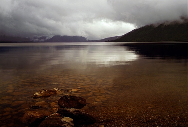 Foggy day at Lake Kaniere - Colour Landscape