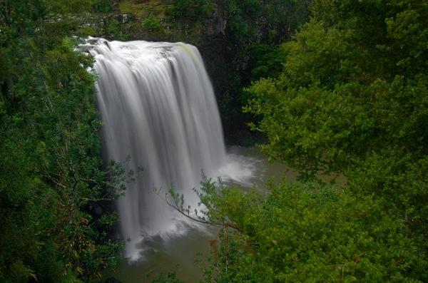 Whangerei falls - New Zealand North Island
