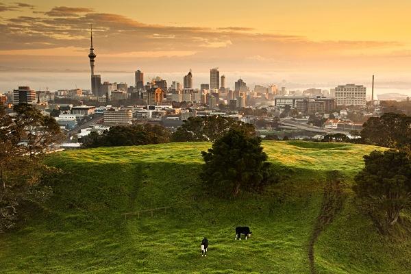Mistry sunrise over Auckland skyline - Auckland