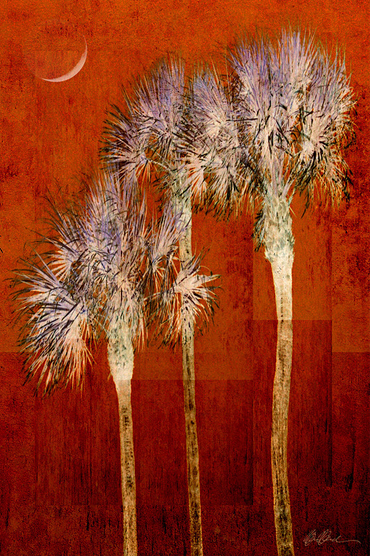 Rusty Palms and Crescent Moon - PhotoCollage