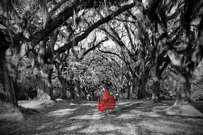 Her Soul Returns Home - Imaginary Worlds in Black & White