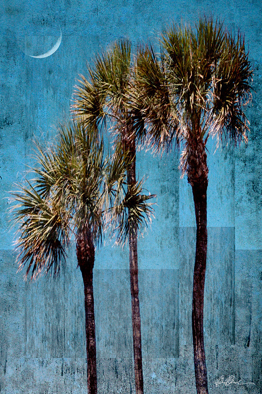 Blue Palms and Crescent Moon - PhotoCollage