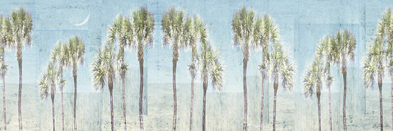 Line of Palms in Light Blue - PhotoCollage