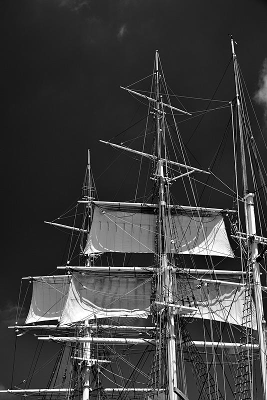Whaling Ship Three Masts - Travel - Black & White