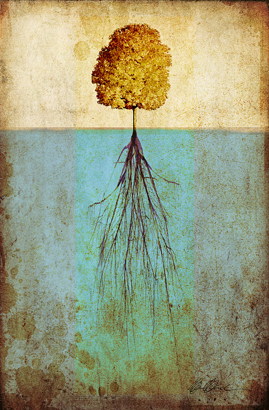 Our roots - PhotoCollage