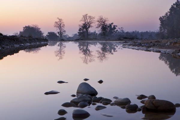 Jim Corbett National Park - Travel