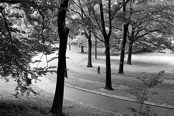 Central Park, NY - Travel