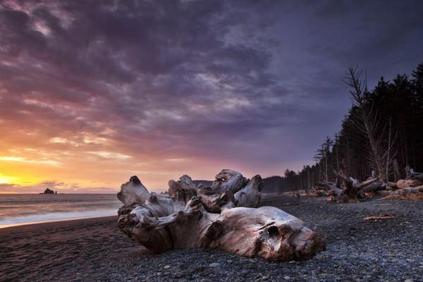 Olympic National Park, Washington State - Travel