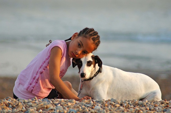 Beach friends - Brighton and Hove