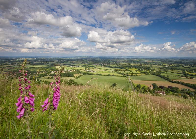 Hot Summer Days - The Malvern Hills