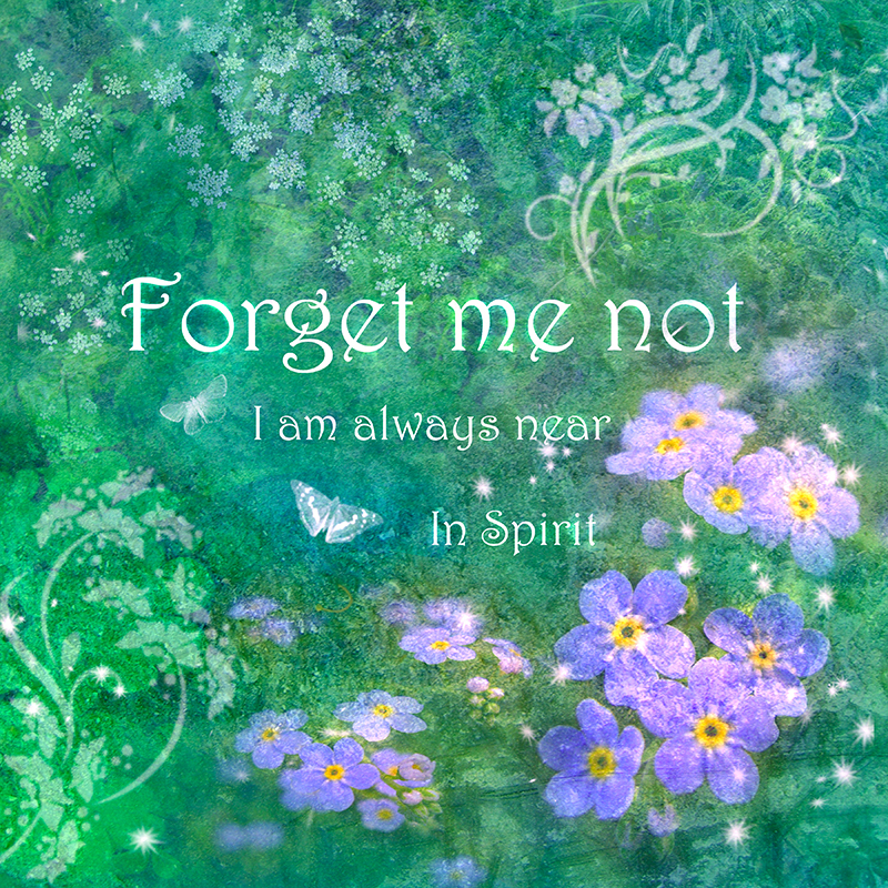 IS002 Forget Me Not - Inspirations Collection