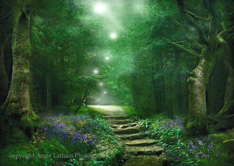 Spirit of the Woods - Enchanted Places