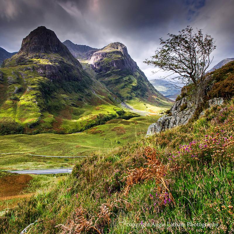 NEW! PS163 Glencoe Rowan - Scottish Landscapes