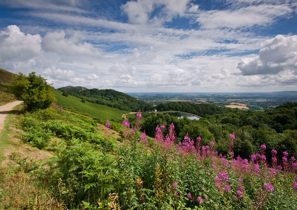 Summer Days - The Malvern Hills
