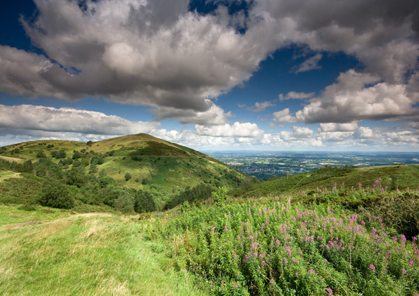 North Hill & Willowherb - The Malvern Hills