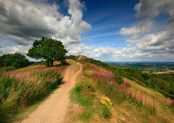 Forever Summer - The Malvern Hills