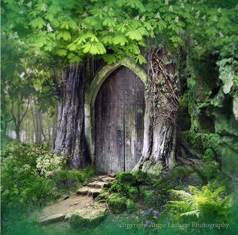 NEW! AS044 Temple in the Forest - Magic & Mystery