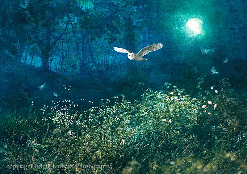Midsummer Moonlight - Mystery & Moonlight
