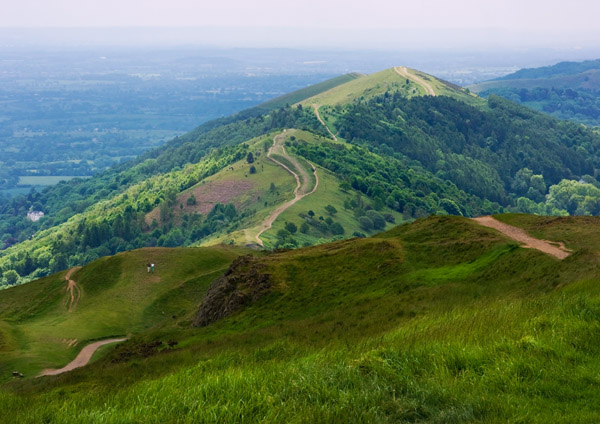 Summer Greens - The Malvern Hills