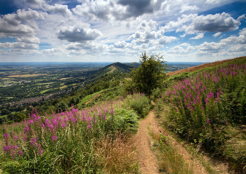 Coverd in Pink - The Malvern Hills