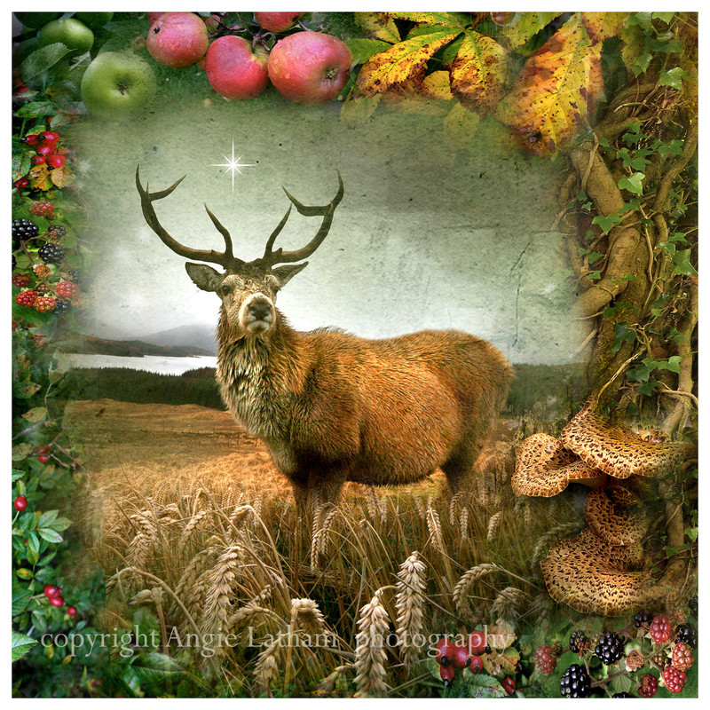 AS014 Autumn Equinox - Magic & Mystery
