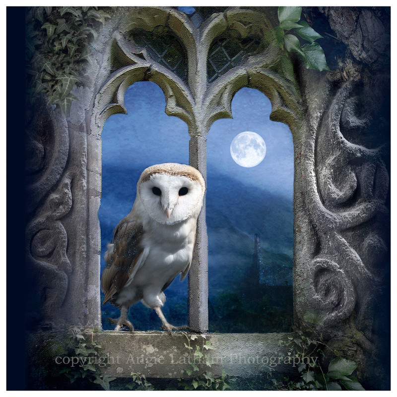 AS005 Evening Falls - Magic & Mystery