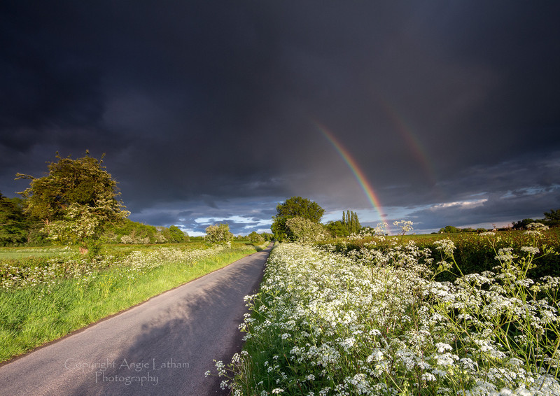 Cow Parsley & Rainbows - England & The Shires