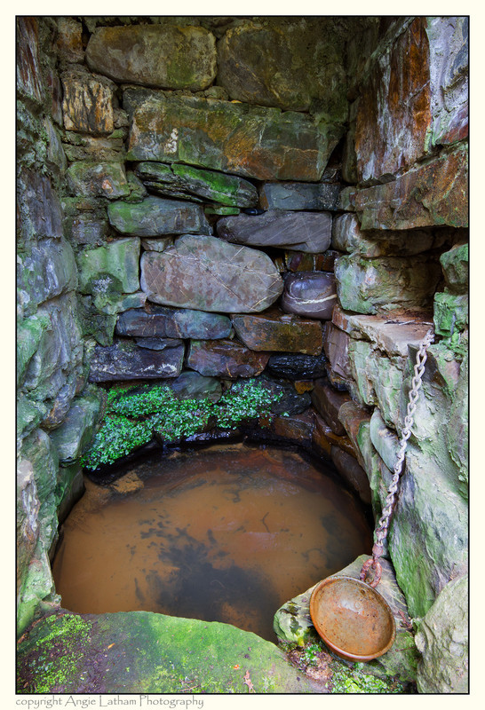 St.Neot's Well Cup 2 - Holy Wells and Sacred Springs