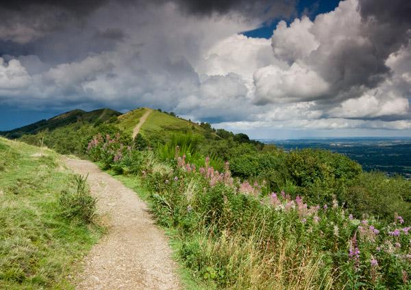 Blackhill Summer - The Malvern Hills