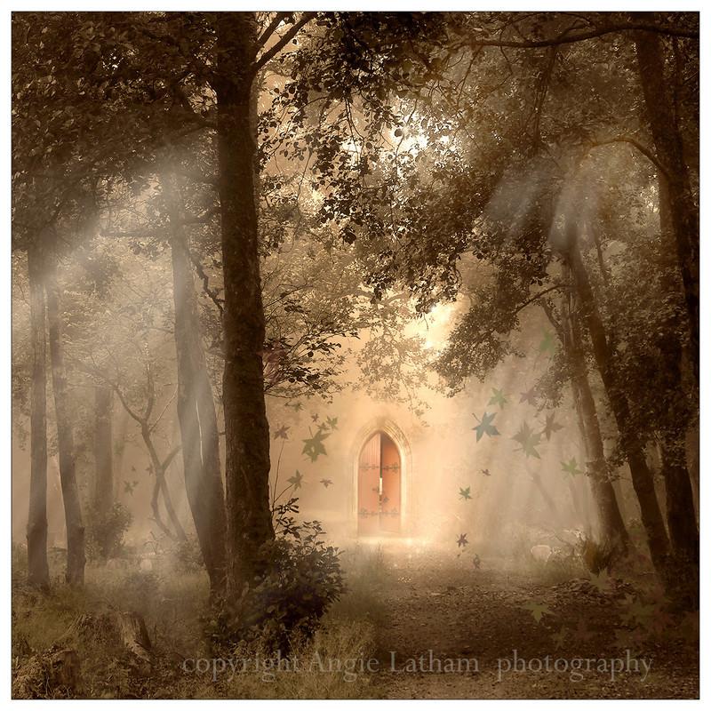 AS004 Mystic Wood - Magic & Mystery