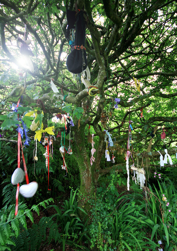 Sancreed Holy Well Offerings - Holy Wells and Sacred Springs