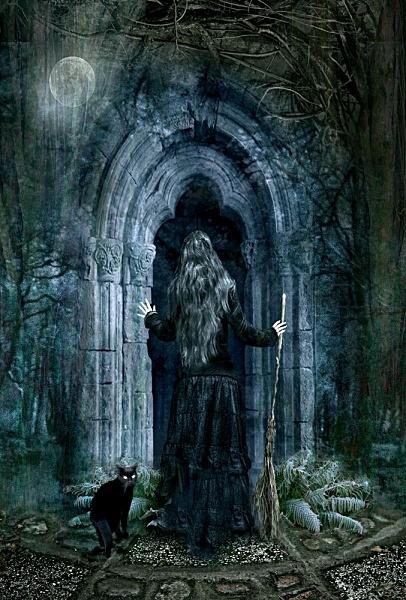 & The Magic Door pezcame.com