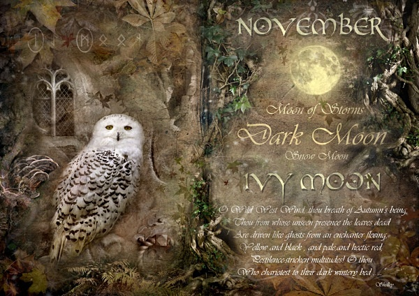 November / Ivy Moon - The Wheel of the Year