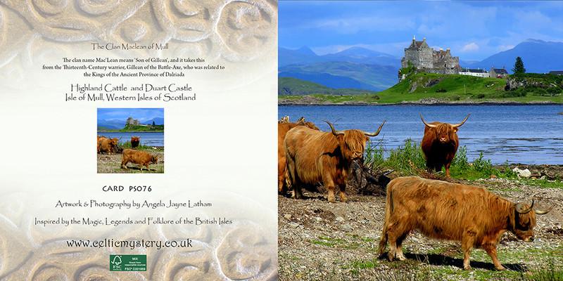 PS076 Highland Cattle and Duart Castle - Scottish Landscapes