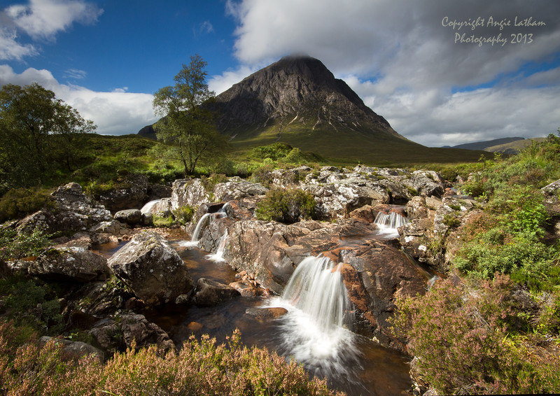 Buachaillie Etive Mor in Summer - Highlands of Scotland
