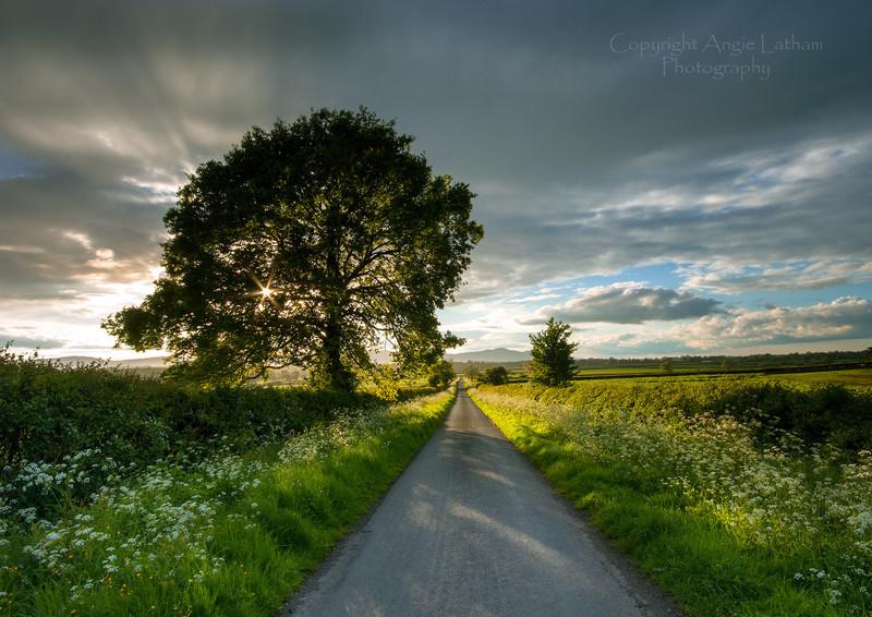 May evening sunburst - England & The Shires