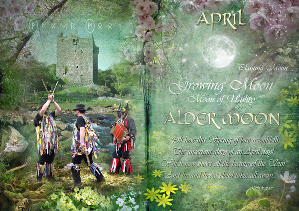 April : Alder Moon - The Wheel of the Year