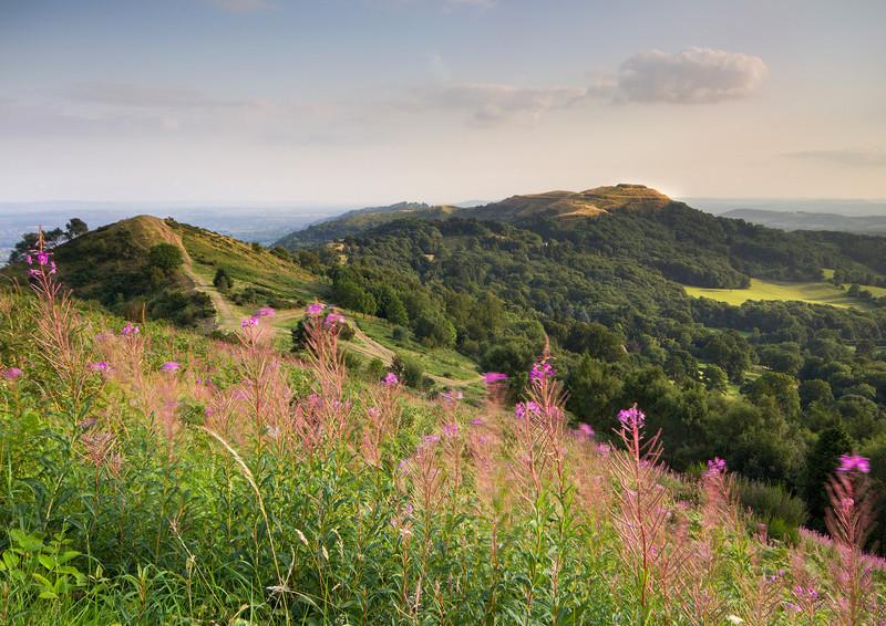 Late Summer Evening - The Malvern Hills