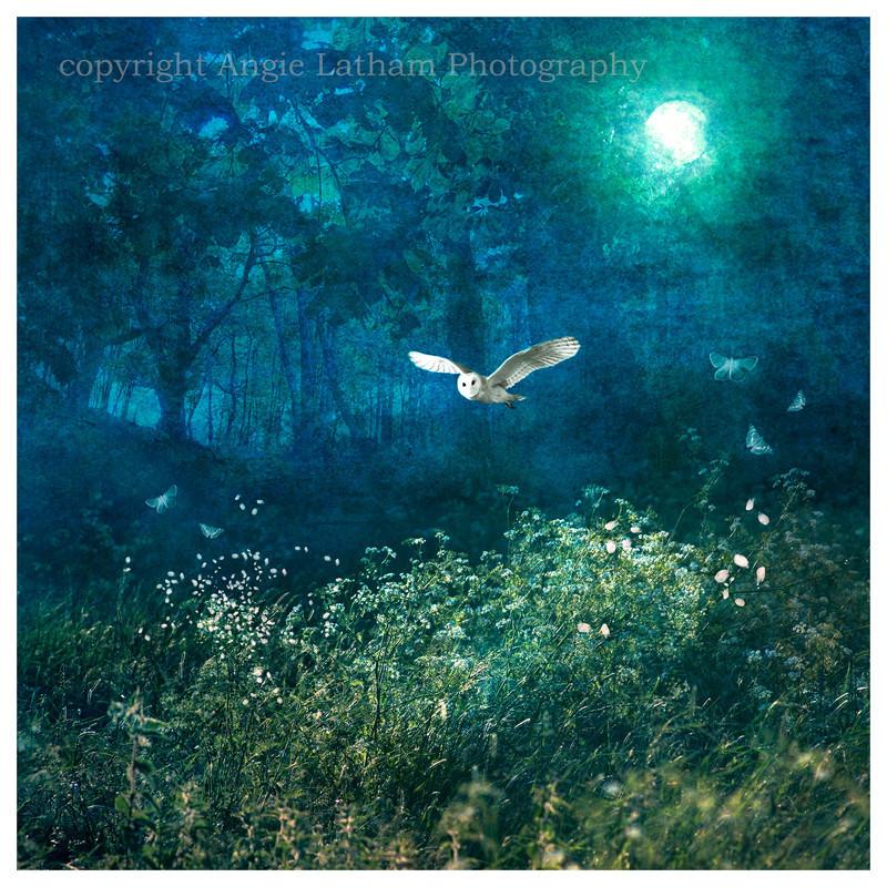 AS011 Midsummer Moonlight - Magic & Mystery