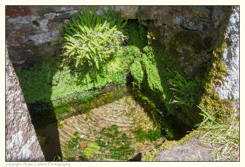 St.Clether's Well water - Holy Wells and Sacred Springs
