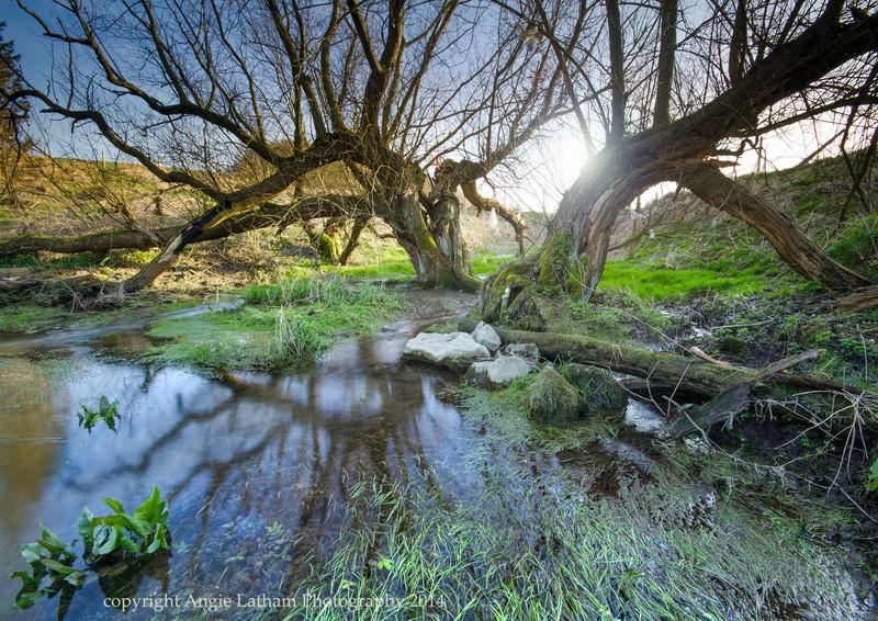 Swallowhead Spring, Avebury - Ancient Sites