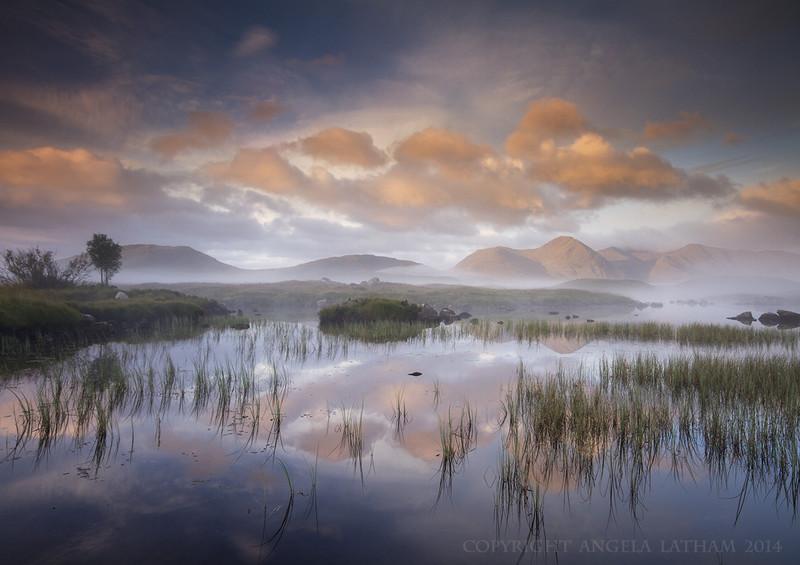 Sunrise on Rannoch Moor 3 - Highlands of Scotland