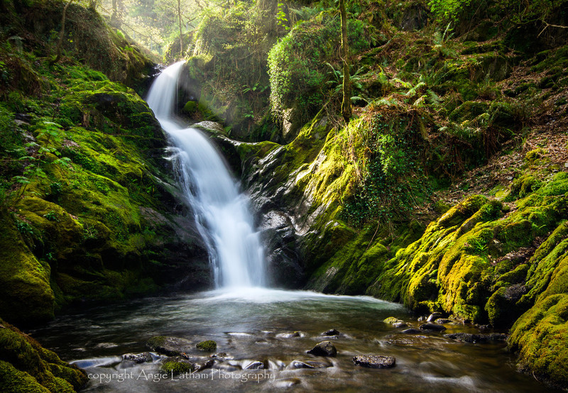 Dolgoch Falls - Celtic Wales