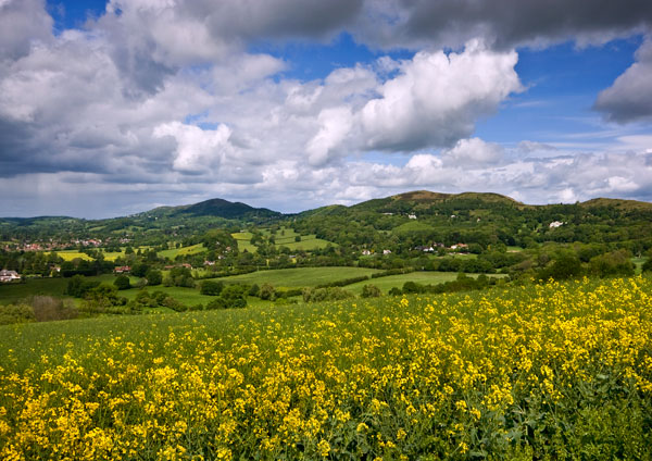 Darling May - The Malvern Hills