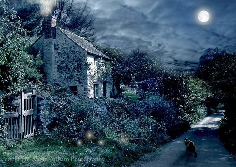 The Witches House - Mystery & Moonlight