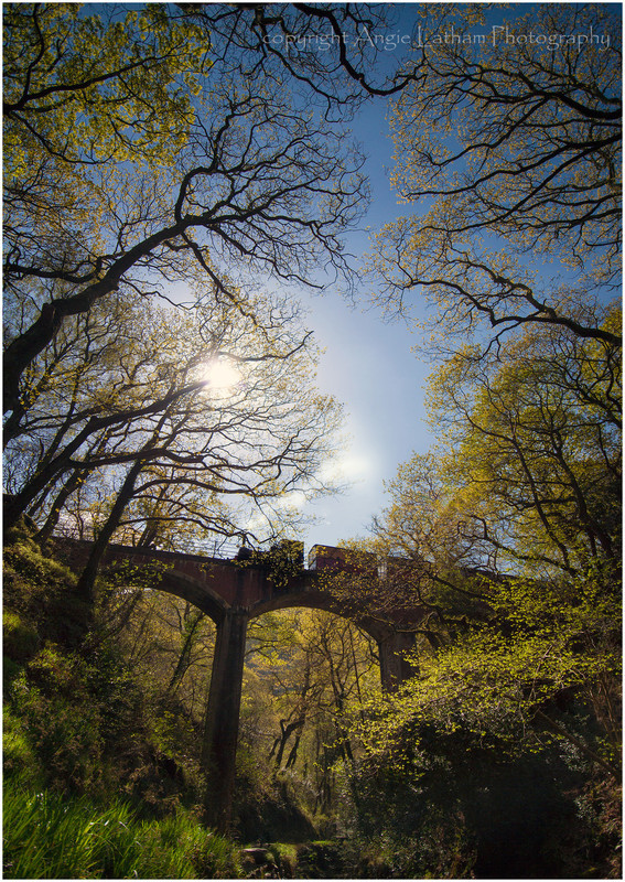 Talyllyn Railway - Celtic Wales