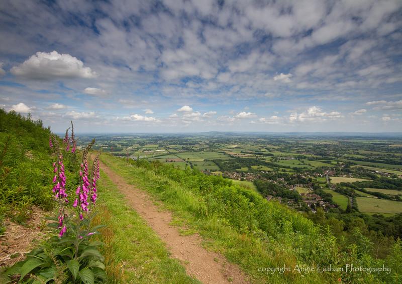 Midsummer's Walk 2 - The Malvern Hills