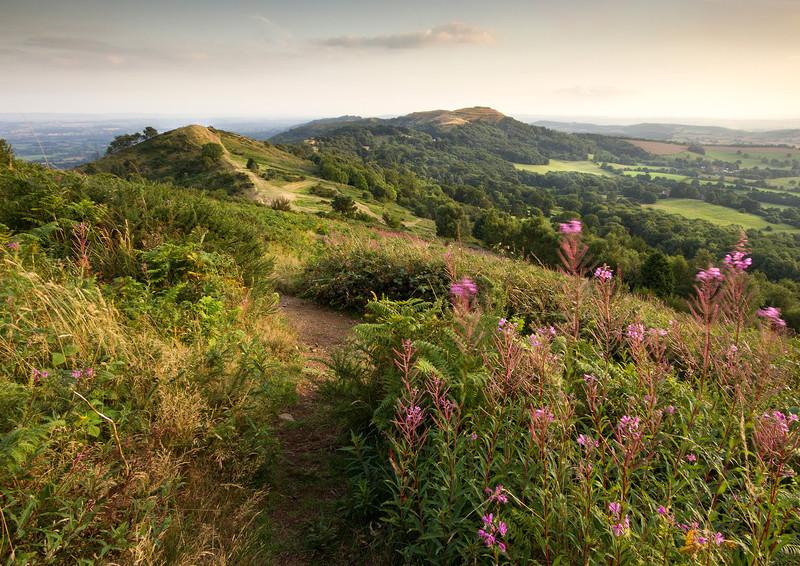Late Summer Evening 2 - The Malvern Hills